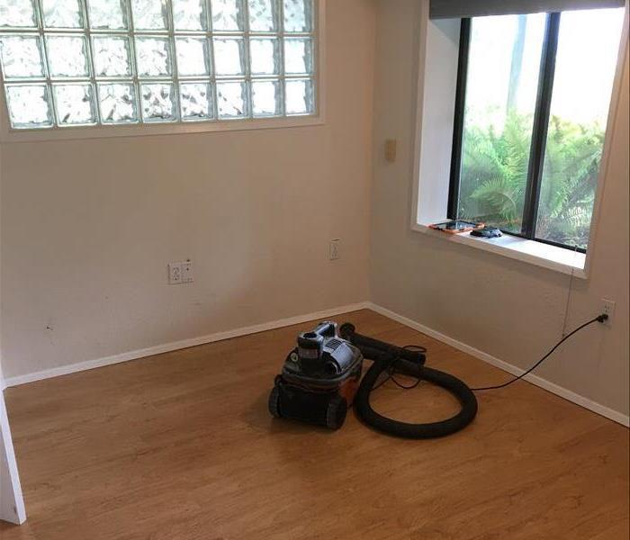 Room with vacuum and hardwood floors with slight mold growth