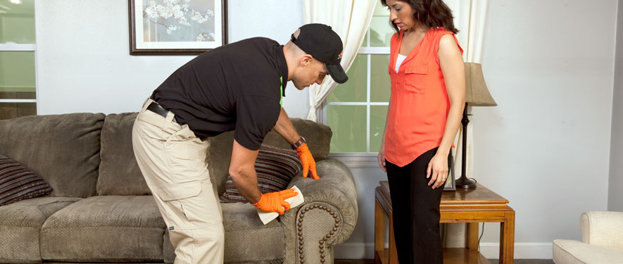 Bremerton, WA carpet upholstery cleaning